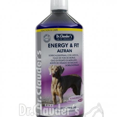 DC-Energy-plus-EnergyFit-Altran