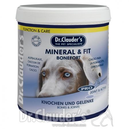 DC-Pro-JointAktiv-Mineral-Fit-Bonefort